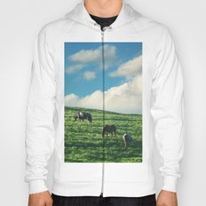 Horses on the Hill Hoody