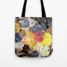 Multicolored Aspen Leaves in Woods Tote Bag
