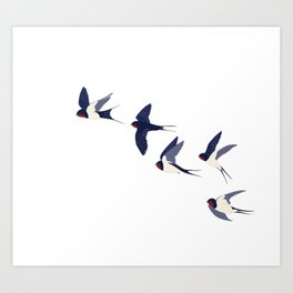 Flying swallows Art Print