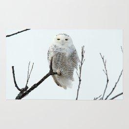 Snowy in the Wind (Snowy Owl 2) Rug