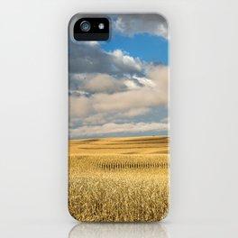 Iowa in November - Golden Corn Field in Autumn iPhone Case