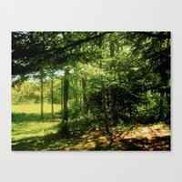 forrest Canvas Prints featuring forrest by larkinjane