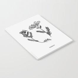 Tansy Botanical Notebook