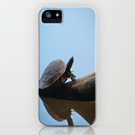 Turtle on The Lake (Color) iPhone Case