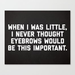 Eyebrows Are Important Funny Quote Canvas Print