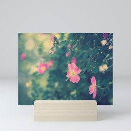 Central Park Roses Mini Art Print