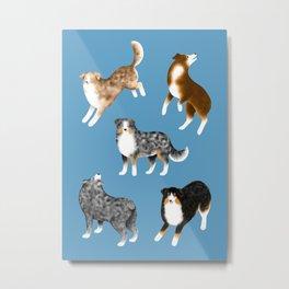 Australian Shepherd Pattern (Blue Background) Metal Print