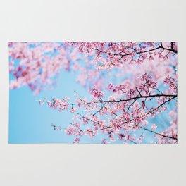 Sakura 06 Rug