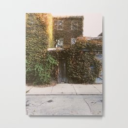 vines at 1003 Metal Print