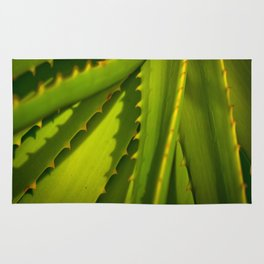 Aloe Arborescens Rug
