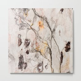 Stone Marble Texture Metal Print
