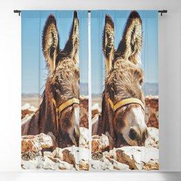 Donkey photo Blackout Curtain