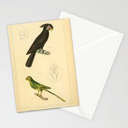 Black-horned Paroquet, Beautiful nimble Paroquet15 Stationery Cards