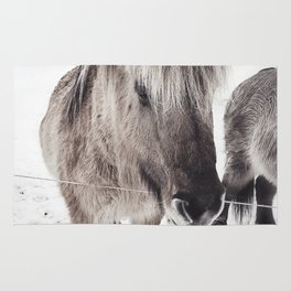 snowy Icelandic horse bw Rug