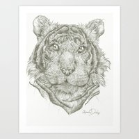 Wildcat Kurt  Art Print