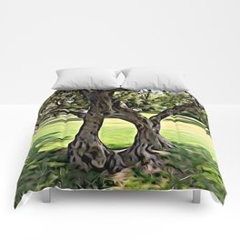 Dance of the Olive Tree Comforters