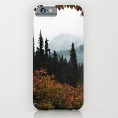 Fall Framed Trail iPhone 6 Slim Case