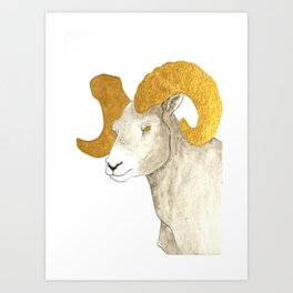 Golden Big Horn Sheep Art Print