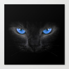 Black Cat in Blue Eyes Canvas Print