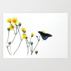 Butterfly Prairie Art Print