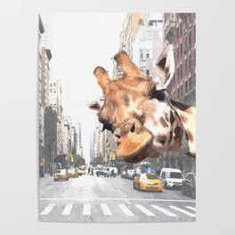Selfie Giraffe in New York Poster