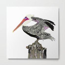 Pelican Plays Eye Spy Metal Print