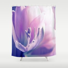 Soft beauty amarillys Shower Curtain
