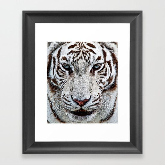 BLUE-EYED BOY Framed Art Print