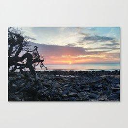 Jekyll Island Sunrise Canvas Print
