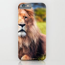 Gorgeous Gracious Grown Masculine Animal Resting On Grass Close Up UHD iPhone Case