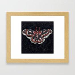 """Crecropia Noir"", IIlustrated Moth Portrait Framed Art Print"