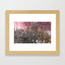 My Garden Framed Art Print