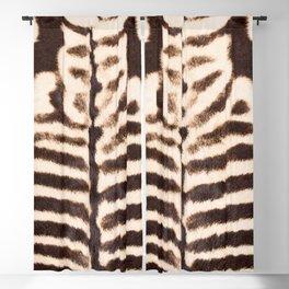 Zebra - stripes - classic - #society6 #buyart Blackout Curtain