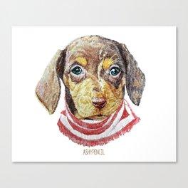 Chase_Dachshund Canvas Print