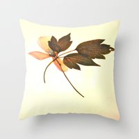 montana Throw Pillows featuring Clematis Montana... by  from a garden...