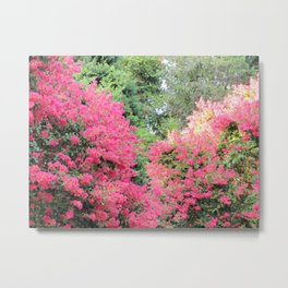 Surrounded by Pink Flowers Metal Print