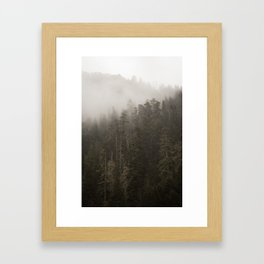 Forest I Framed Art Print