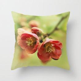 Chaenomeles flowers Throw Pillow