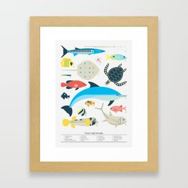 Coral reef animals Framed Art Print