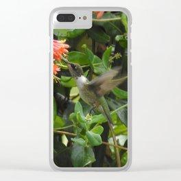 Hummingbird in Trumpet Honeysuckle Clear iPhone Case