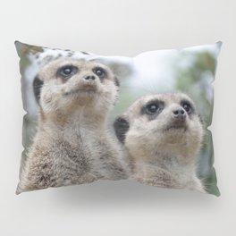 Meerkat Dreamteam Pillow Sham