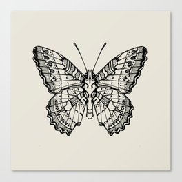 Lacewing Butterfly Canvas Print