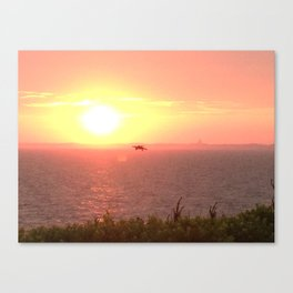 Hawk Hunts at Sunset over the Beach Canvas Print