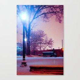 Midnight Wonderland Canvas Print