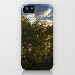 Mangroves at Sunset iPhone Case