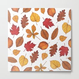 Autumn Leaves Watercolor Pattern   Fall Leaves   Autumn Foliage Design   Metal Print