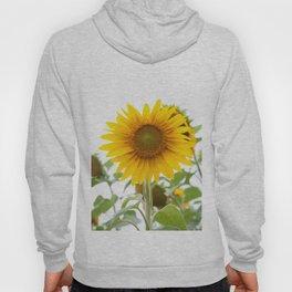 Sunflower #1 #decor #art #society6 Hoody