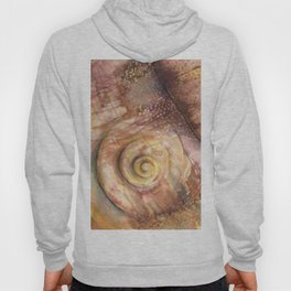 Abstract Shell Hoody