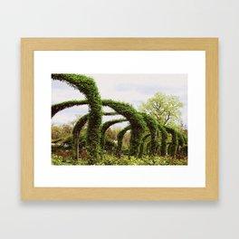 Elizabeth Park  Framed Art Print