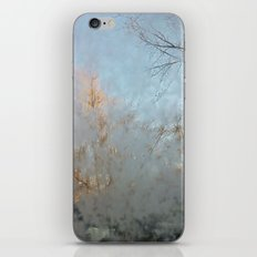 Frost Touch iPhone & iPod Skin